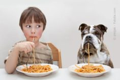 Erziehungstricks für Kinder und auch Hunde
