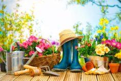 Mit Kindergarten-Kindern in den Garten – der Leitfaden